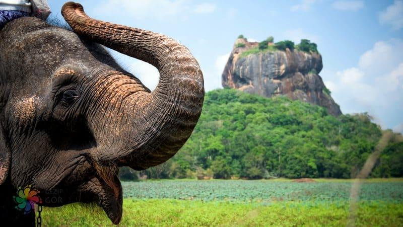 Sri Lanka Sigiriya-lion-rock-fortress