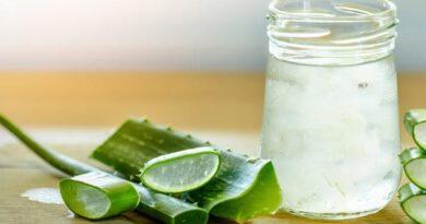 Aloe veranın cilde faydaları cilt çatlaklığından kurtulabilirsiniz!